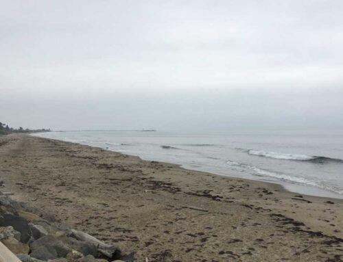 Foggy Ride Along the Coast